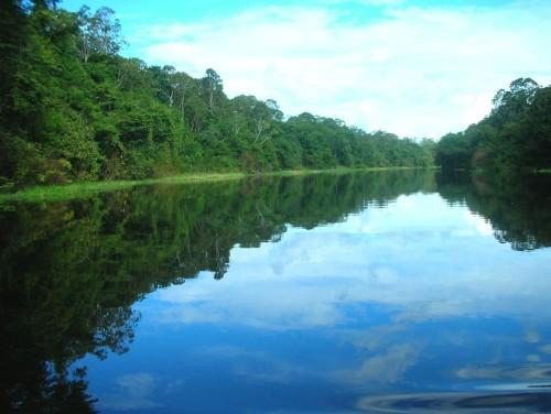 rio-amazonas3.jpg