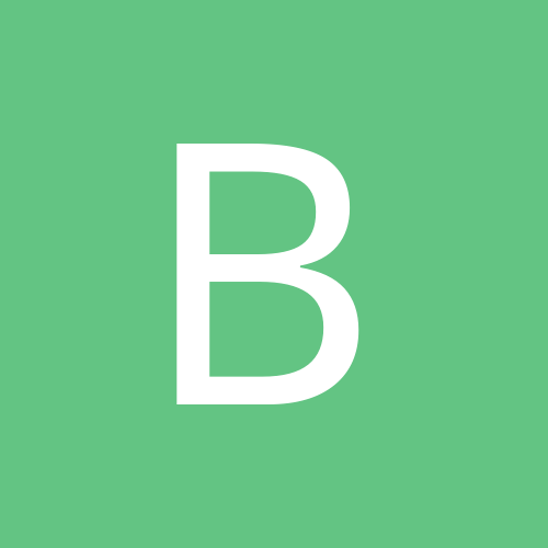 bichon60