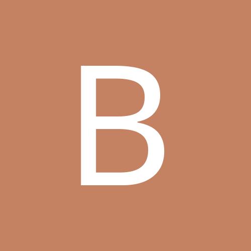 bricedecaen