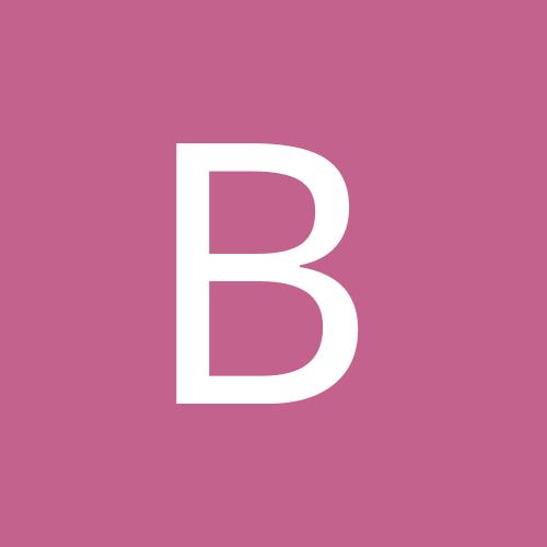 brubru91a