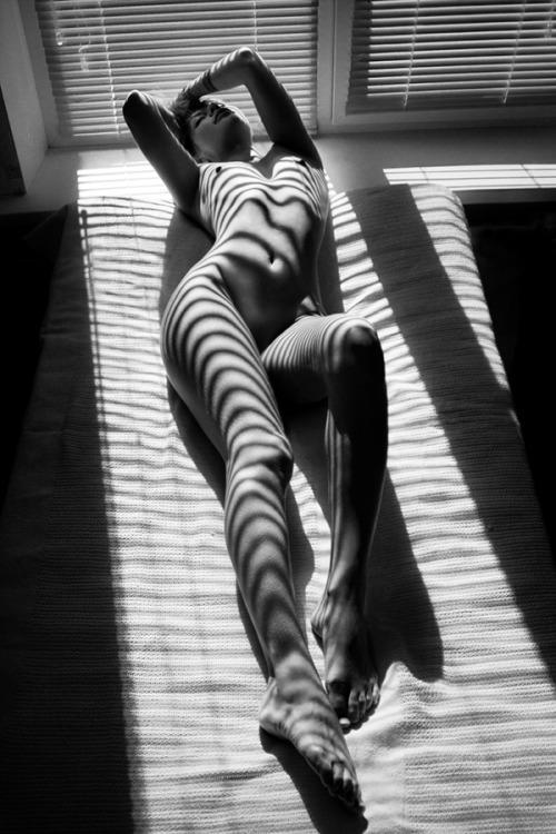 galerie-NB-nue-soleil-ombre.jpg.d610666fe2a34df5c24ca53b9deffcb8.jpg