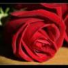 Le masque de Titia - dernier message par Arlequin46